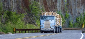 Old big rig cab-over semi truck transporting paper recycling on flat bed semi trailer driving on mountain winding road with rock wall.